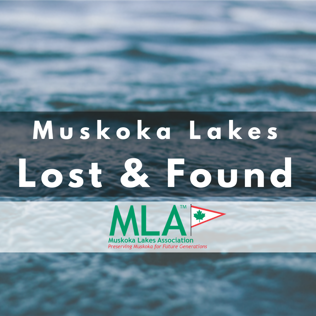 MLA Lost & Found Facebook Page